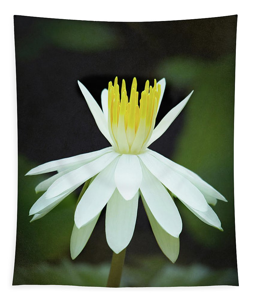 Spring Tapestry featuring the photograph White And Yellow Ballerina by Sabrina L Ryan