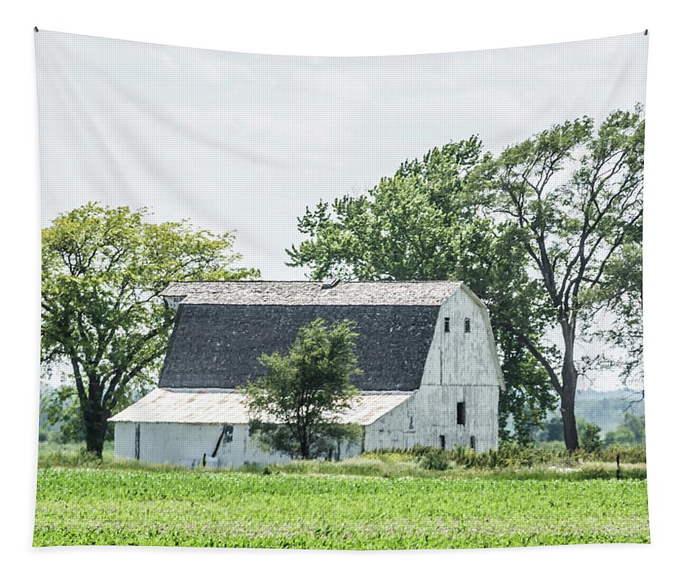Farm Tapestry featuring the photograph White Barn by Pamela Williams