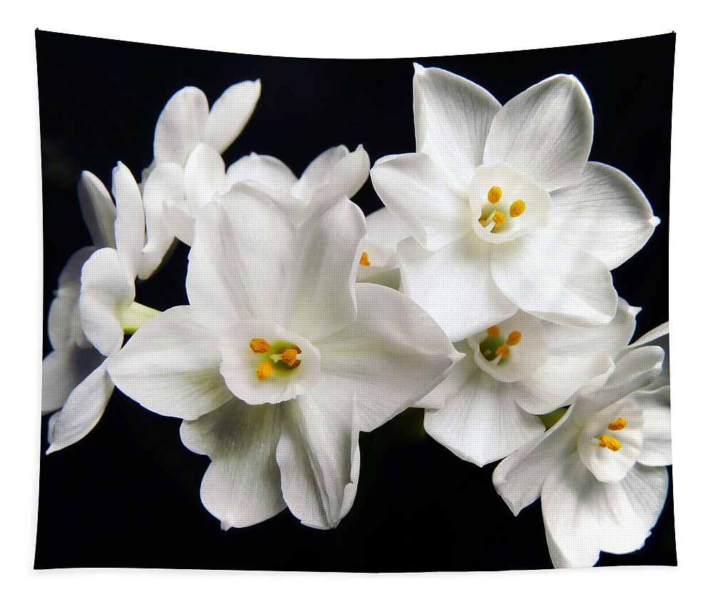 Flower Tapestry featuring the photograph White Beauty by Mary Lane