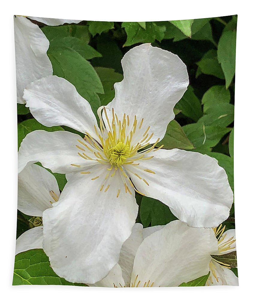 Flower Tapestry featuring the photograph White Clematis 0808 by Teresa Wilson