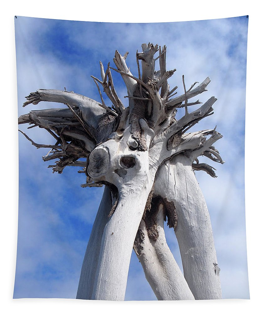 Tree Tapestry featuring the photograph White Desert Tree by Philip Openshaw