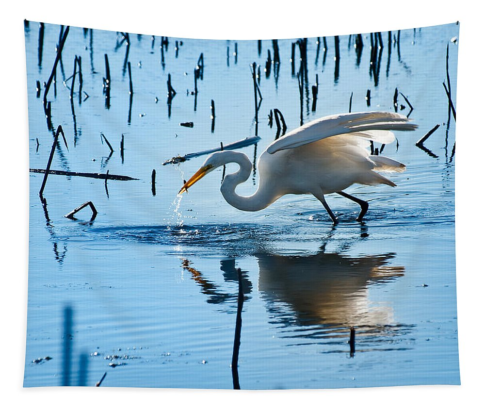 Bird Tapestry featuring the photograph White Egret At Horicon Marsh Wisconsin by Steve Gadomski