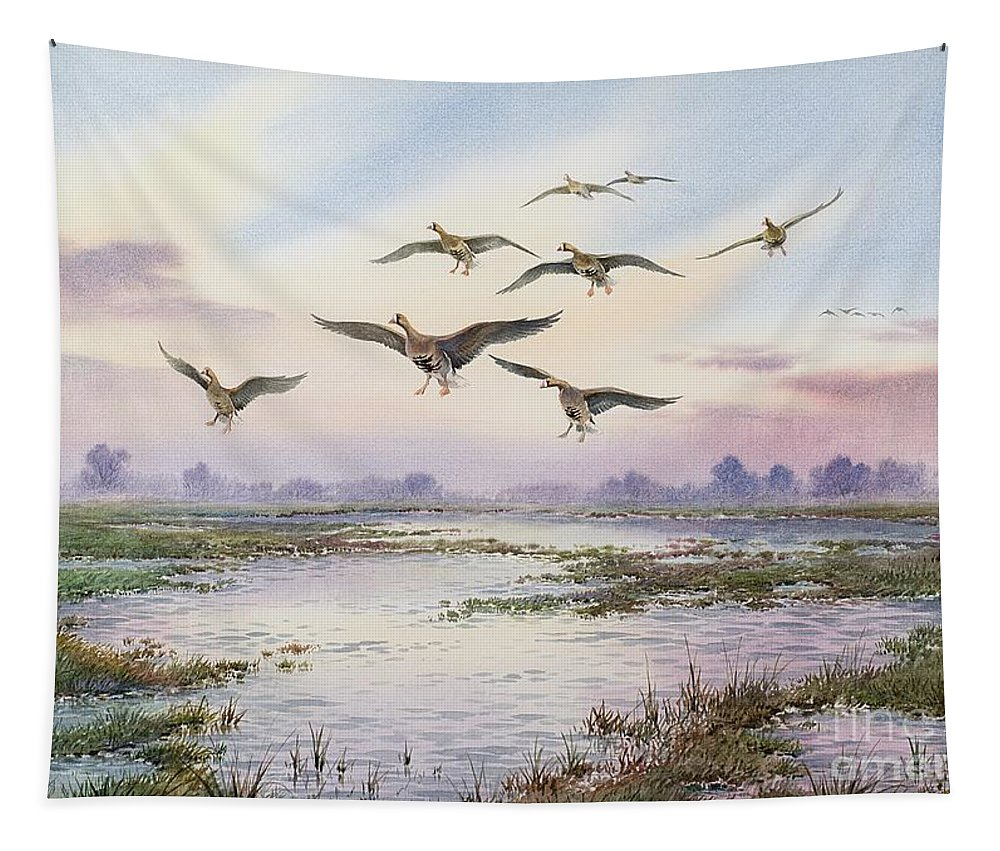 Geese; White-fronted; Marsh; River; Bird Landing; Goose; Landscape; Flying; Water; Grass; Sky; Animals Tapestry featuring the painting White-fronted Geese Alighting by Carl Donner