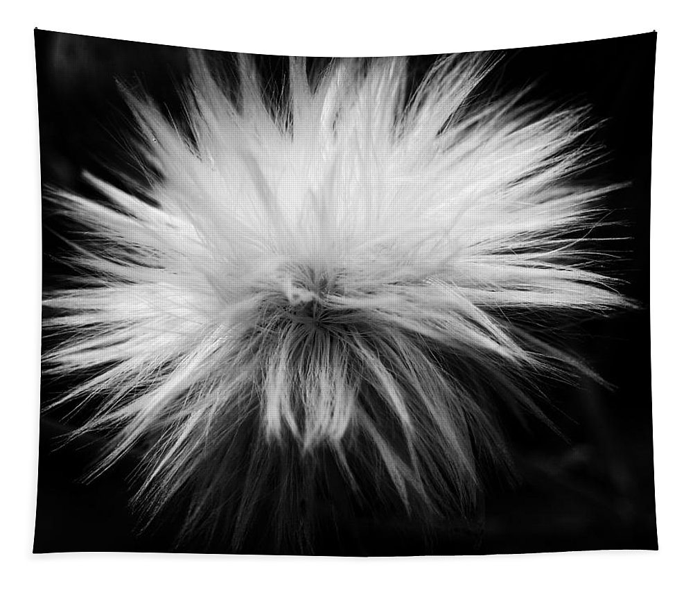 Nature Tapestry featuring the photograph White Hairs ... by Juergen Weiss