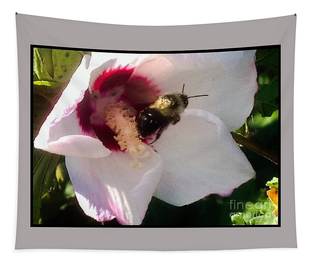 Bumble Tapestry featuring the photograph White Hibiscus Bloom With Bumble Bee by Debra Lynch