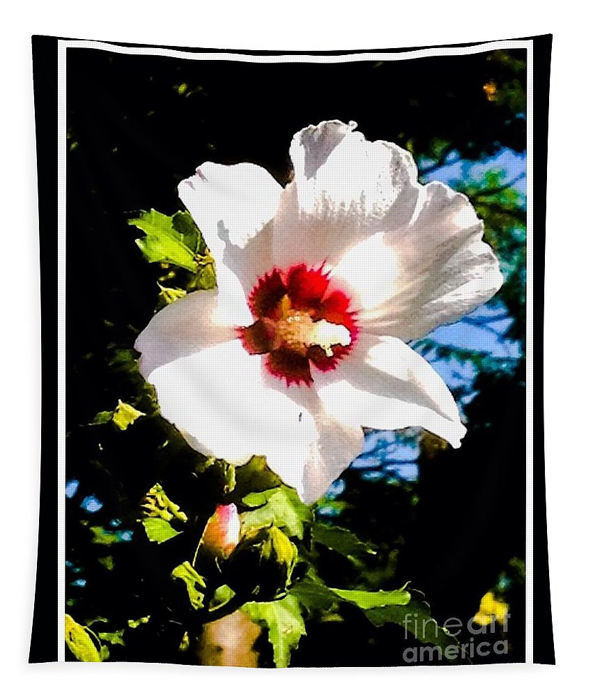Nature Tapestry featuring the photograph White Hibiscus High Above In Shadows by Debra Lynch