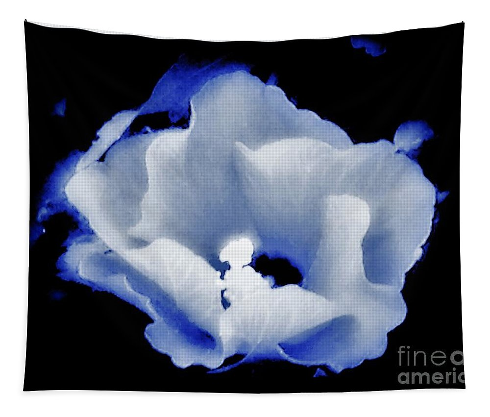 Hibiscus Tapestry featuring the photograph White Hibiscus On Black Background by Debra Lynch