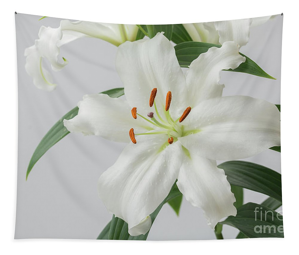 White Lilies Tapestry featuring the photograph White Lily 2 by Steve Purnell