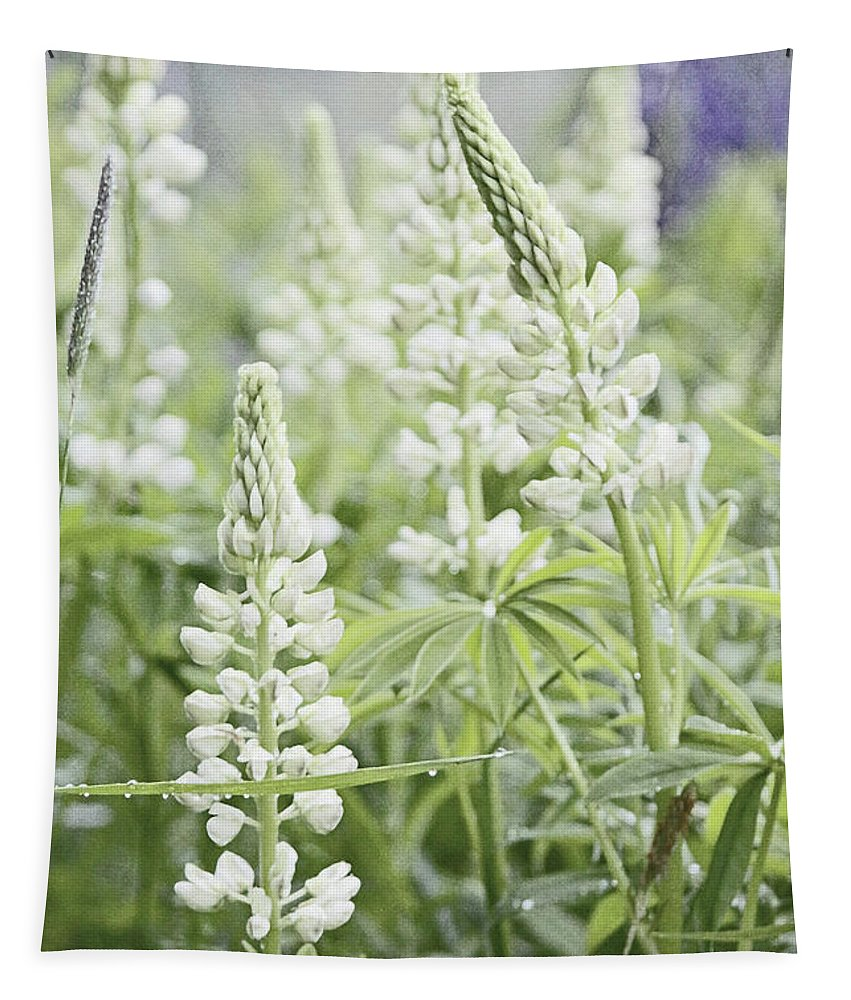 White Tapestry featuring the photograph White Lupines by Laura Mace Rand