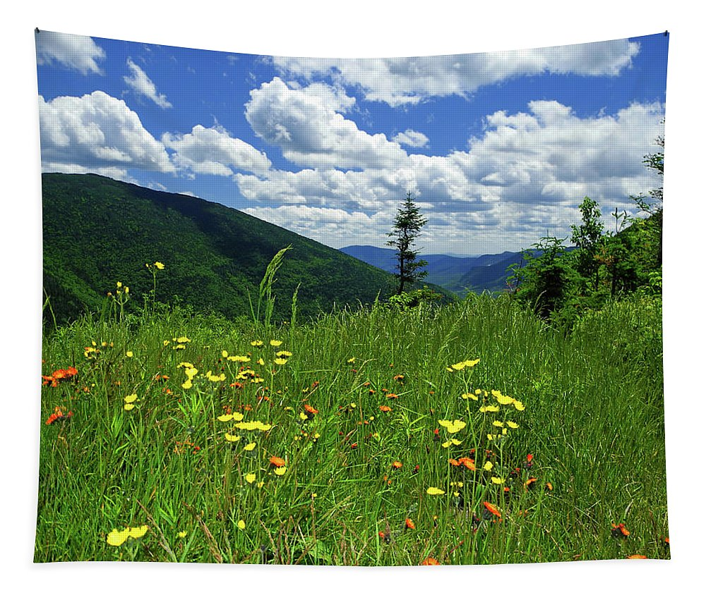 White Mountains Tapestry featuring the photograph White Mountains by Raymond Salani III