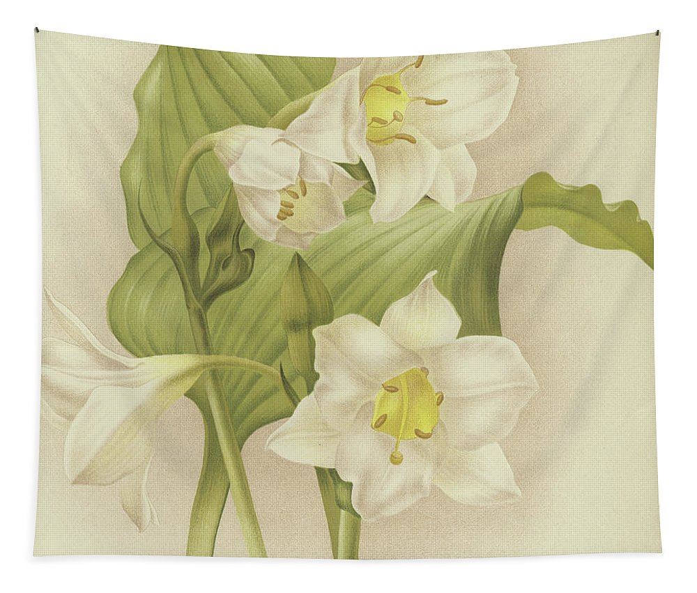 Orchid Tapestry featuring the painting White Orchids  Eucharis Sanderiana by English School