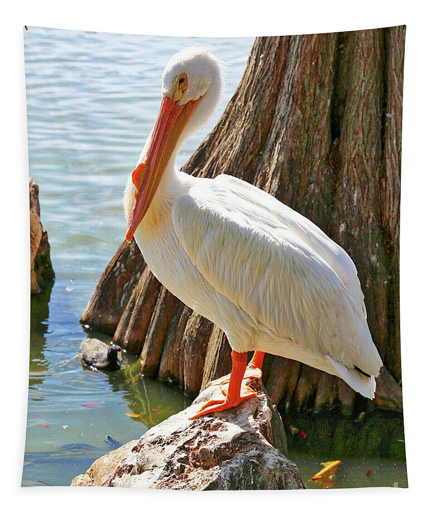 American White Pelican Tapestry featuring the photograph White Pelican By Cypress Tree by Carol Groenen