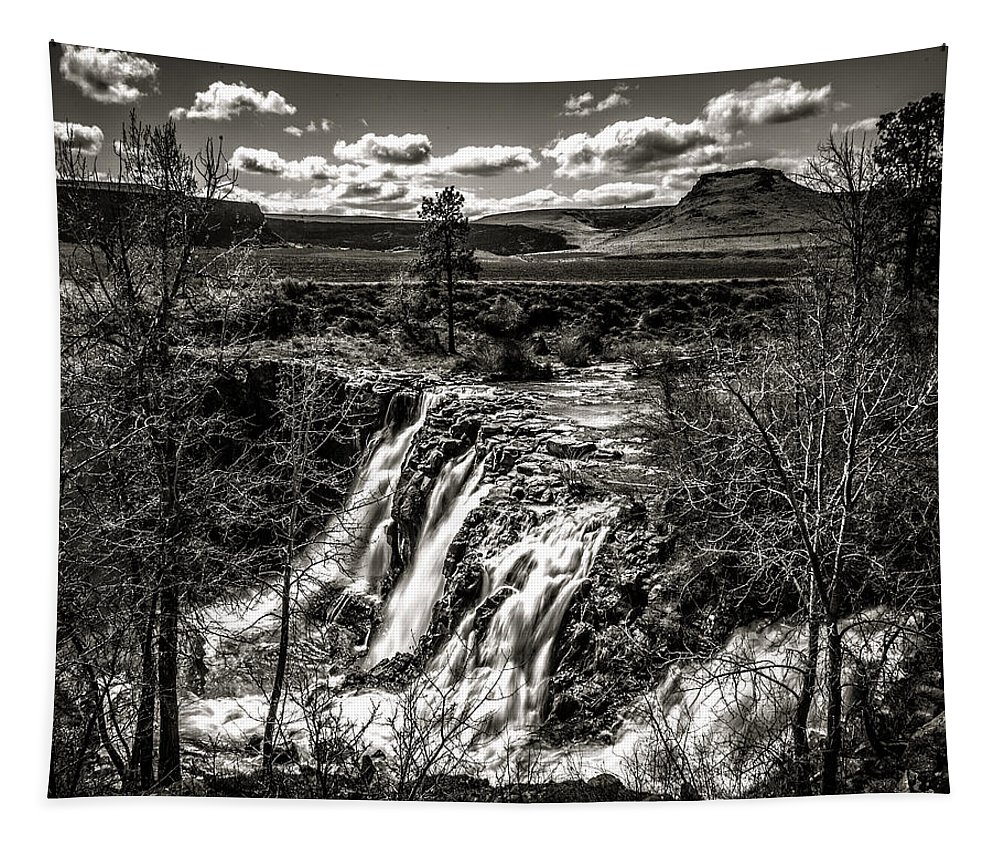 White River Falls Black And White Tapestry featuring the photograph White River Falls Black And White by Wes and Dotty Weber