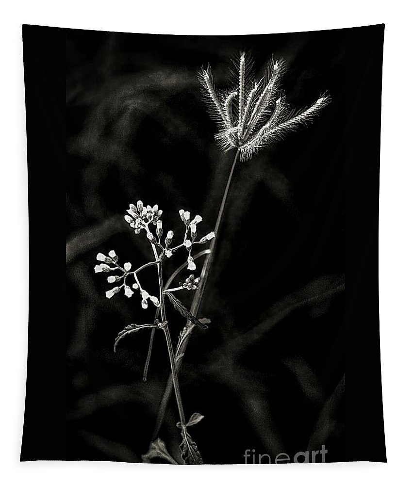 Wild Tapestry featuring the digital art Wild And Beautiful B/w by Ian Gledhill