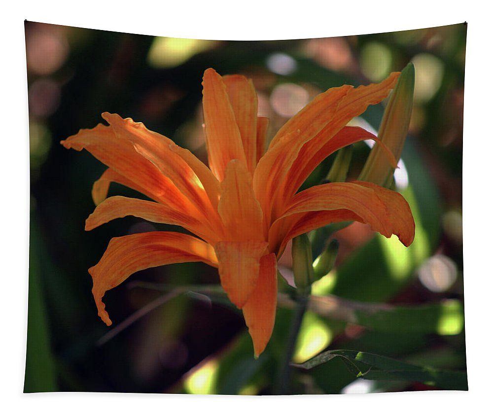 Wild Daylilies Tapestry featuring the photograph Wild Daylilies 1167 H_2 by Steven Ward