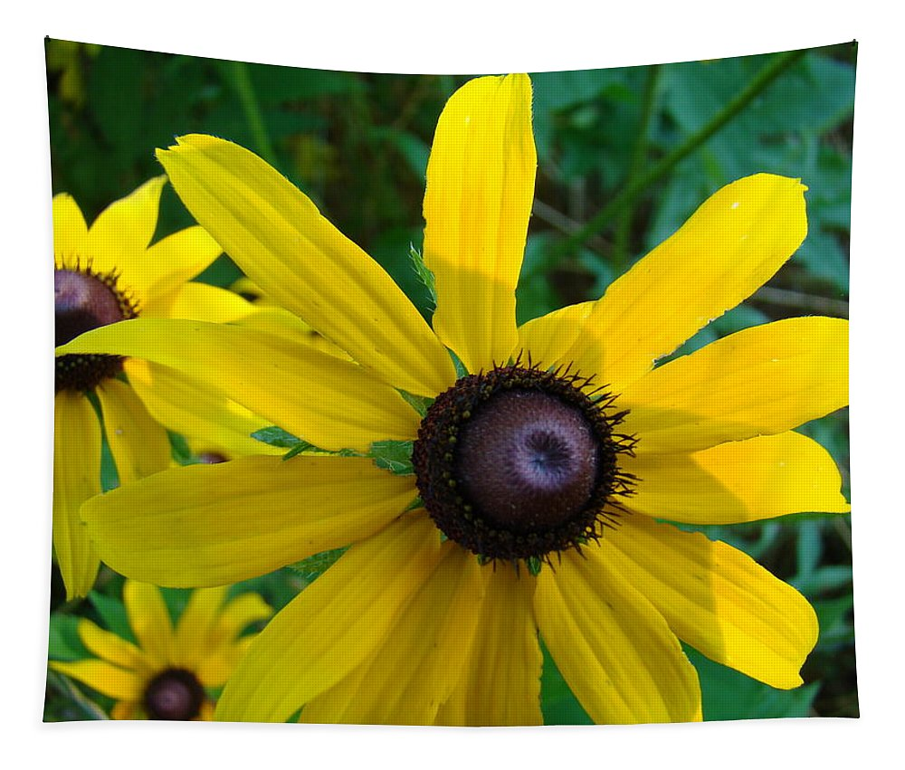 Wild Flower Tapestry featuring the photograph Brown Eyed Suzy by Michael MacGregor
