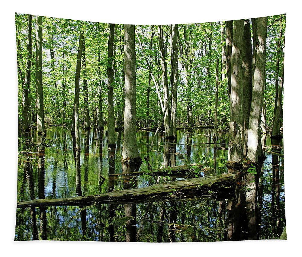Guelph Tapestry featuring the photograph Wild Goose Woods Pond by Debbie Oppermann