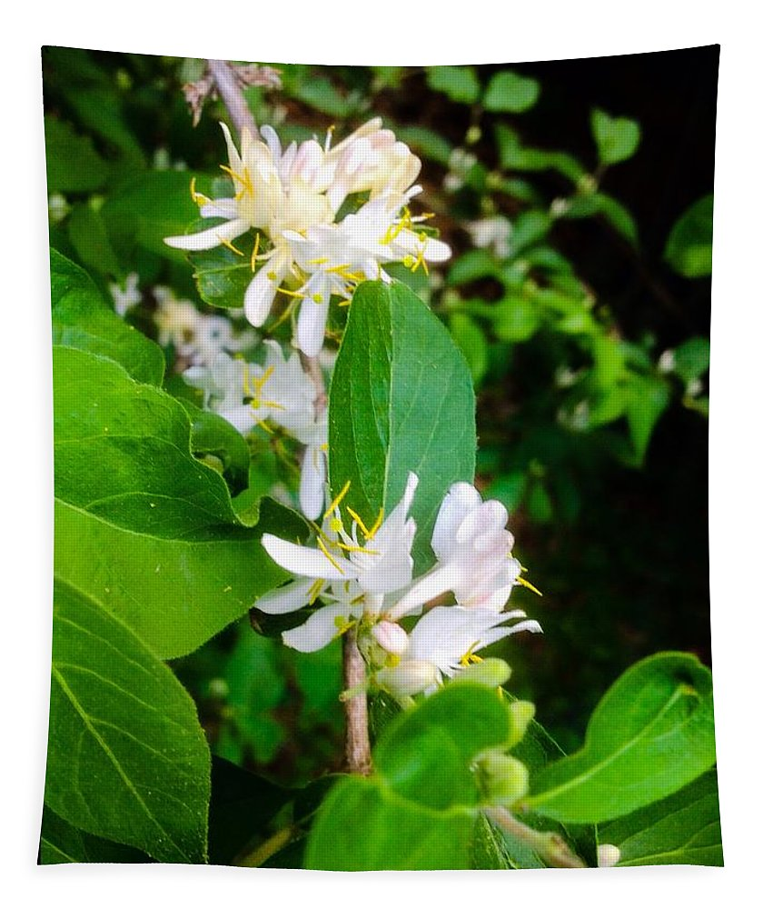 Photography Tapestry featuring the photograph Wild Honeysuckle Vine by Debra Lynch