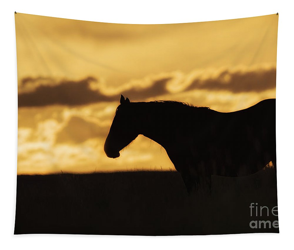 Wild Horse Sunrise Tapestry featuring the photograph Wild Horse Sunrise by Priscilla Burgers