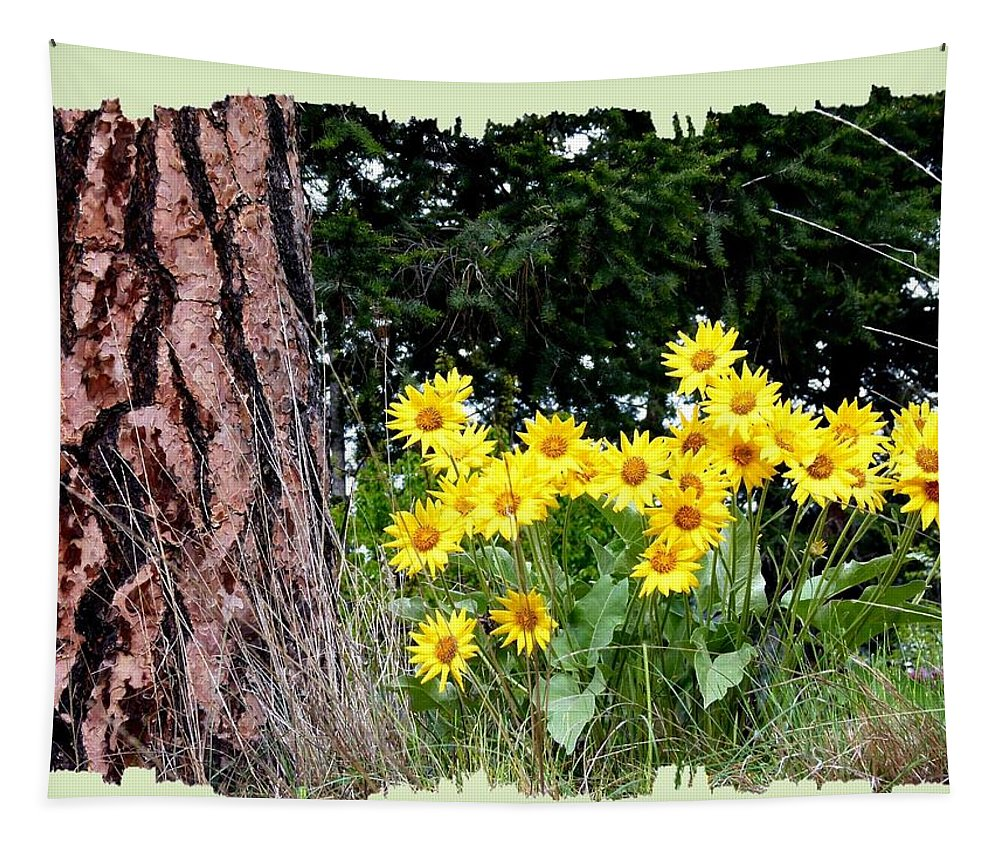 Wild Oyama Sunflowers Tapestry featuring the photograph Wild Oyama Sunflowers by Will Borden