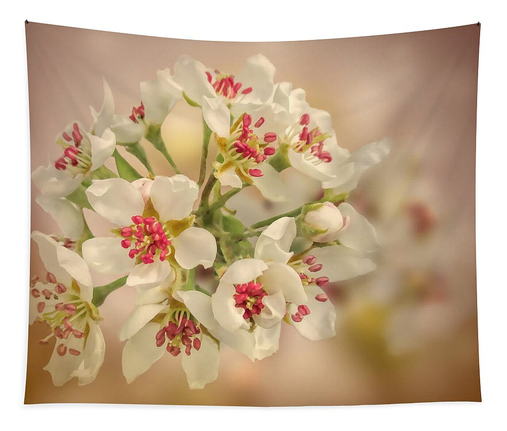 Pear Tapestry featuring the photograph Wild Pear Blossom by Valerie Anne Kelly