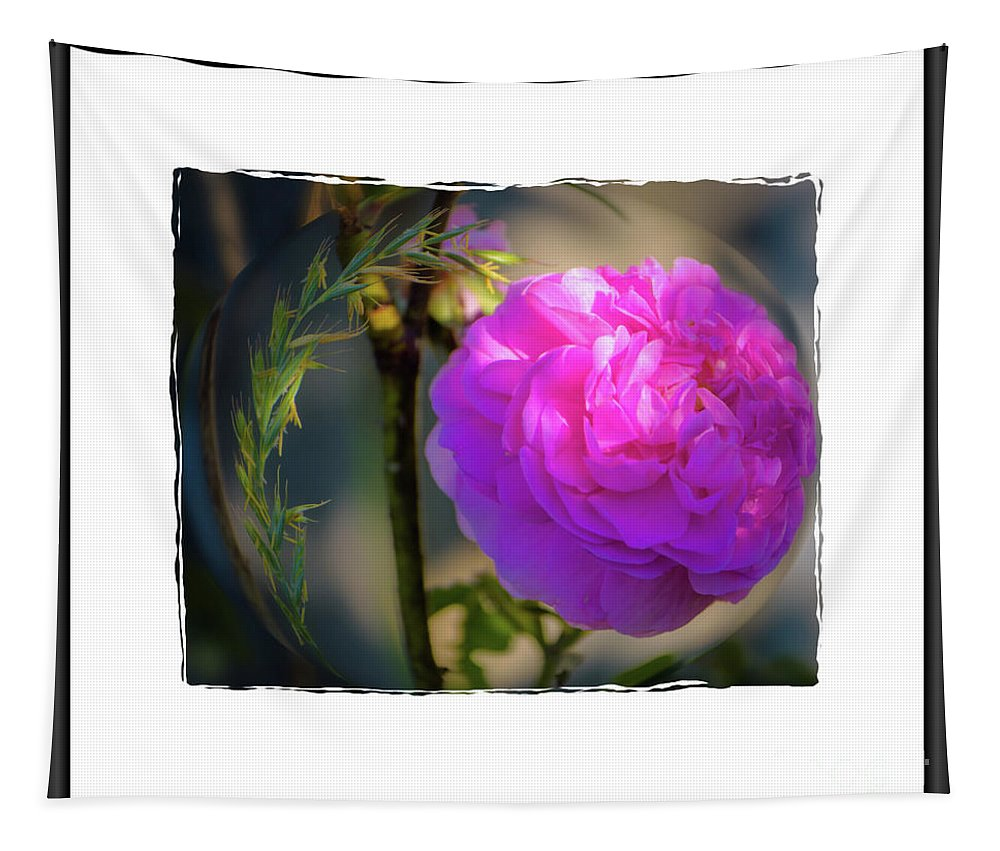 Rose Tapestry featuring the photograph Wild Pink Rose by Sherman Perry