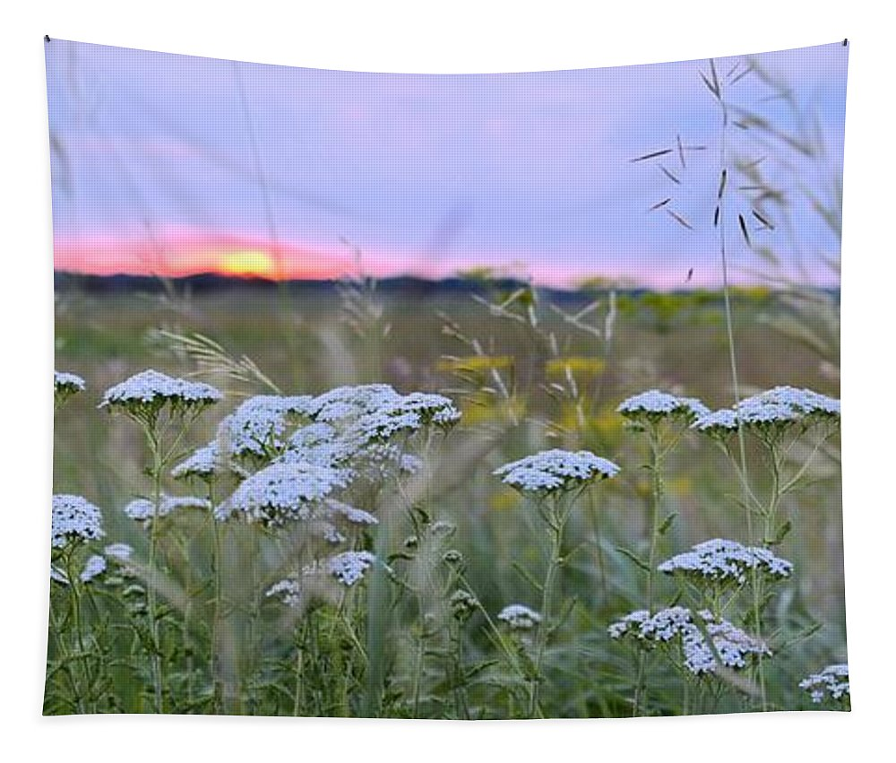 Flowers Tapestry featuring the photograph Wild Sunrise by Bonfire Photography