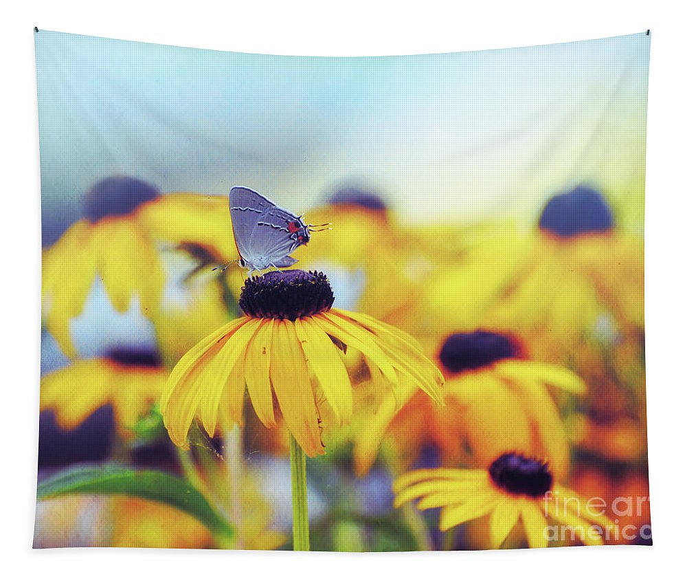 Butterfly Tapestry featuring the photograph Wildflower Visitor by Kerri Farley