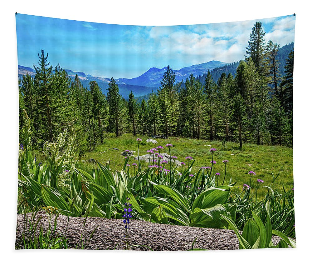 Yosemite National Park Tapestry featuring the photograph Wildflowers In Upper Yosemite by Lynn Bauer