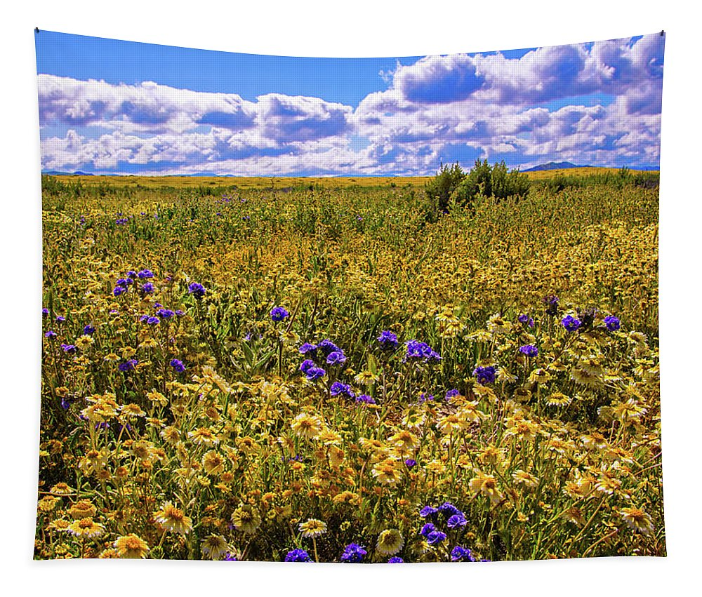 Carrizo Plain Tapestry featuring the photograph Wildflowers Of The Carrizo Plain Superbloom 2017 by Lynn Bauer