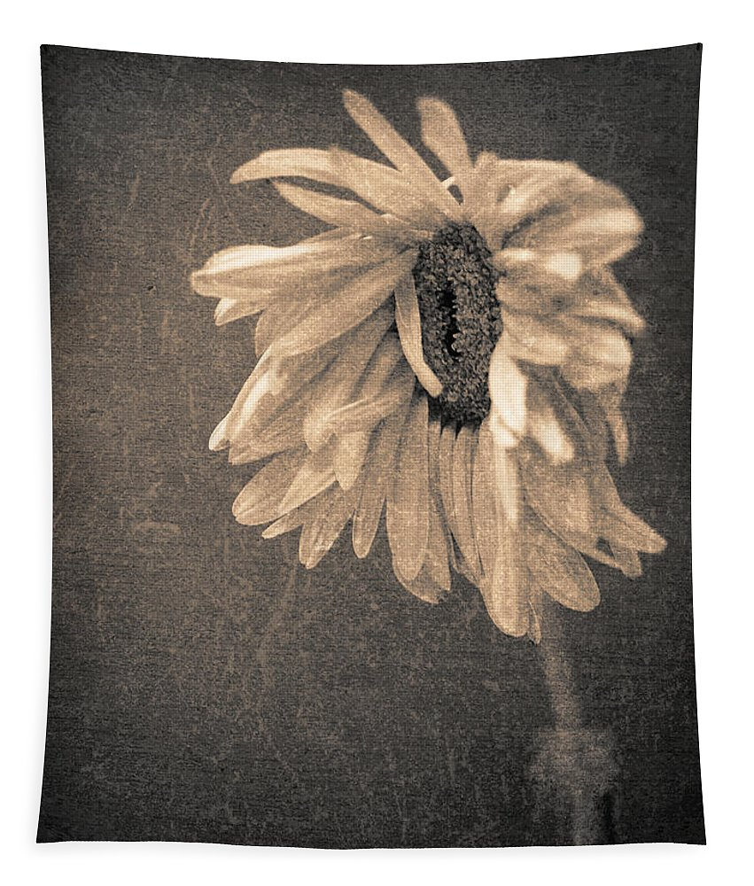 Flower Tapestry featuring the photograph Wilting In Colour by Tara Turner