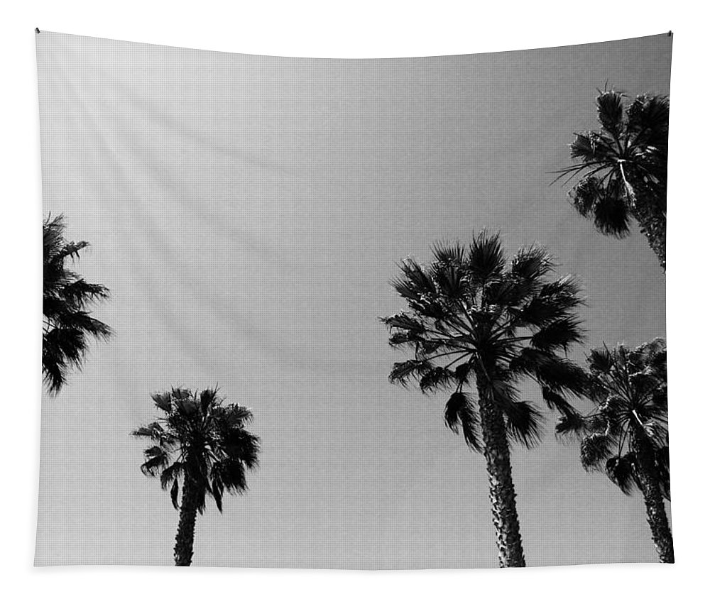 Palm Trees Tapestry featuring the photograph Wind In The Palms- By Linda Woods by Linda Woods