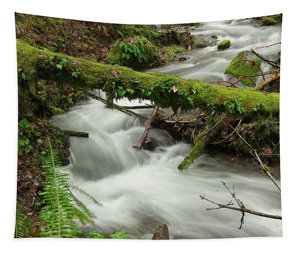 Rivers Tapestry featuring the photograph Winding Creek With A Mossy Log by Jeff Swan