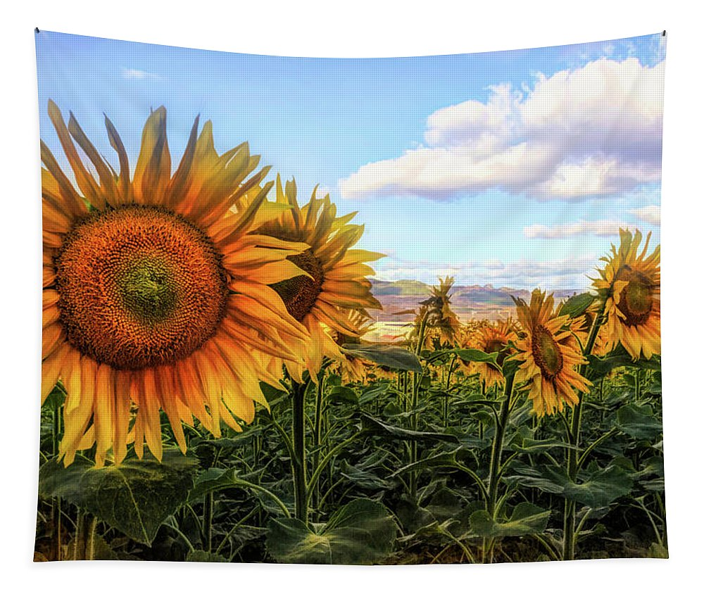 French Tapestry featuring the photograph Window To The Sunflower Fields Oil Painting by Debra and Dave Vanderlaan