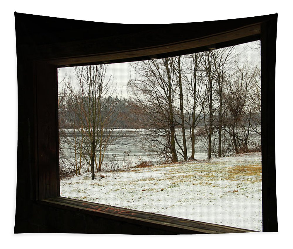 Window To Winter Tapestry featuring the photograph Window To Winter by Karol Livote