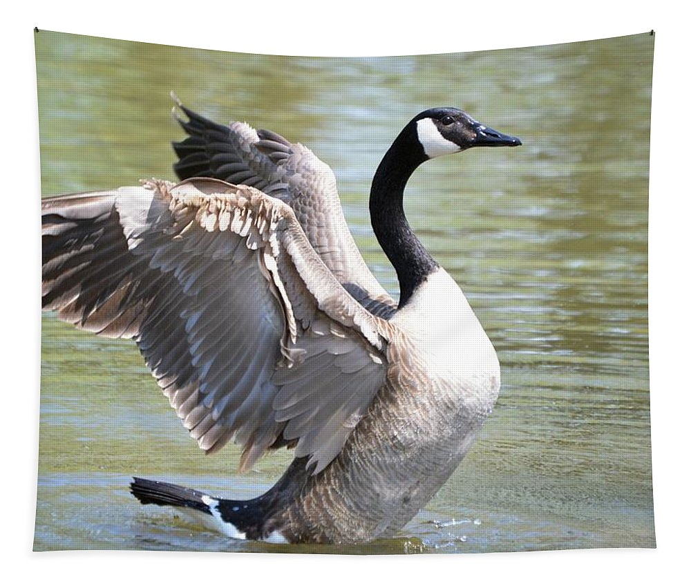 Goose Tapestry featuring the photograph Wing Flapping by Bonfire Photography
