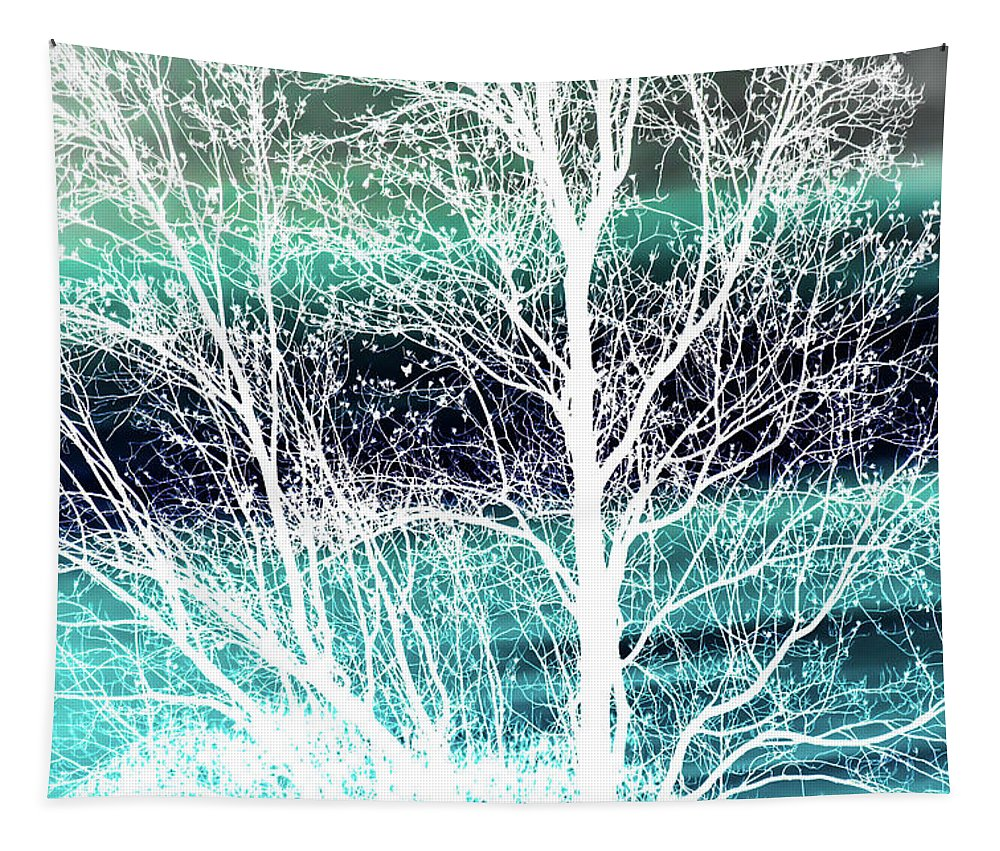 Winter Tapestry featuring the photograph Winter Blues by Heather Joyce Morrill