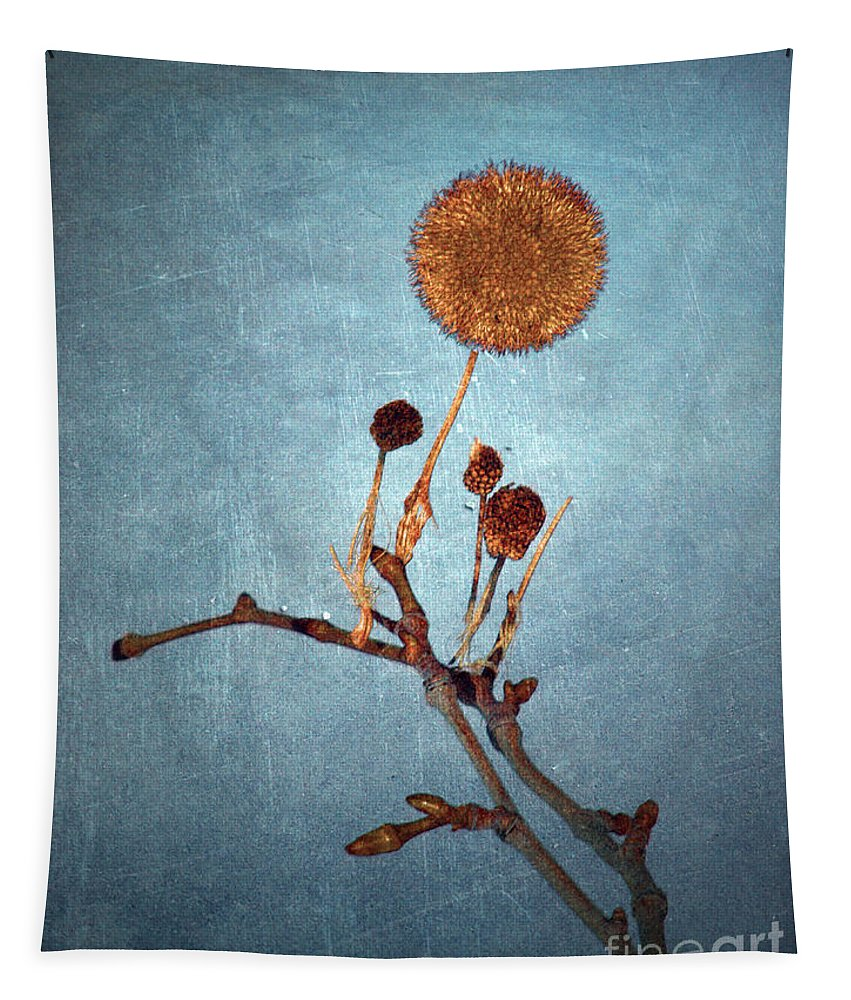Blue Tapestry featuring the photograph Winter Branch by Tara Turner