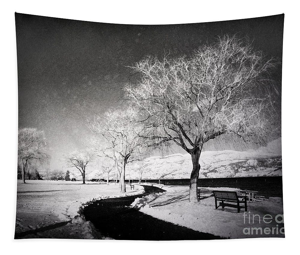 Black&white Tapestry featuring the photograph Winter Darkness by Tara Turner