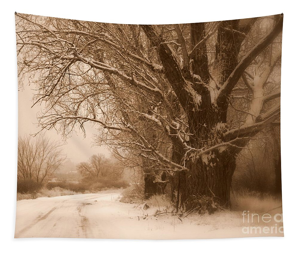 Prosser Tapestry featuring the photograph Winter Dream by Carol Groenen