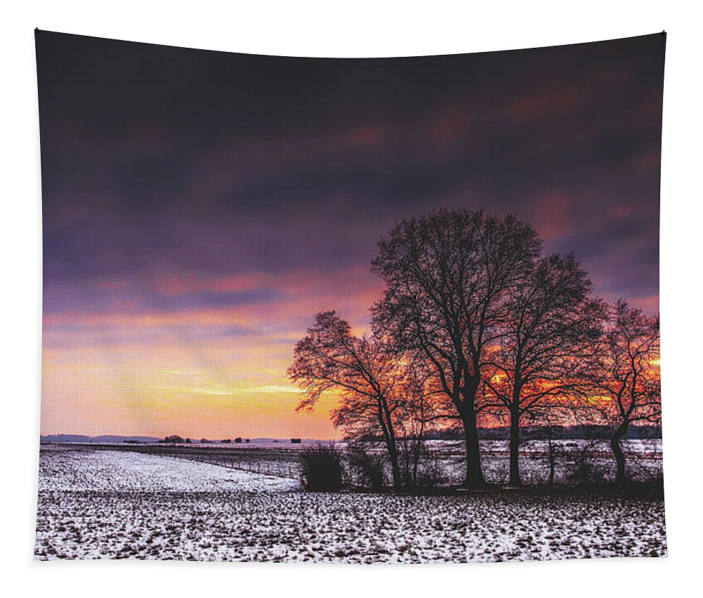 Sunset Tapestry featuring the photograph Winter Fields by Pixabay
