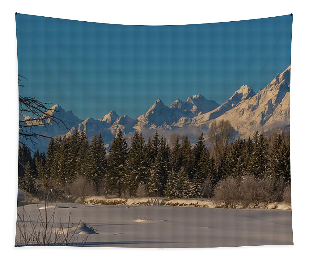 Tetons Tapestry featuring the photograph Winter Morning At The Grand by Yeates Photography
