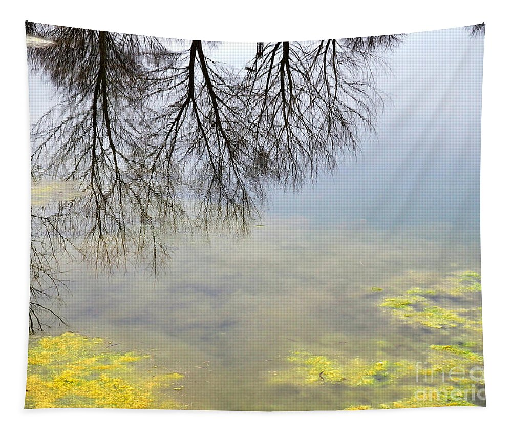 Winter Tapestry featuring the photograph Winter Pond Reflections by Gary Richards