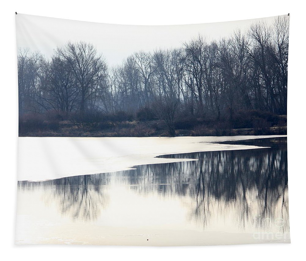 Yakima Tapestry featuring the photograph Winter Reflection On The Yakima River by Carol Groenen