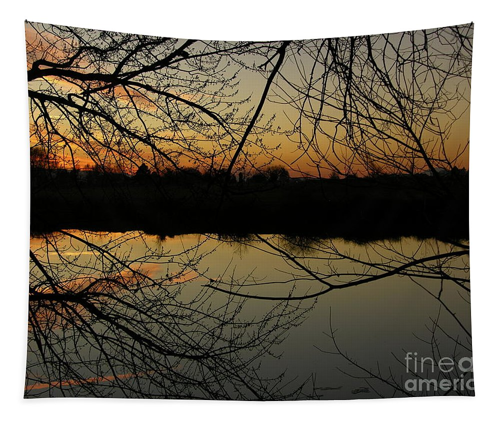Sunset Tapestry featuring the photograph Winter Sunset Reflection by Carol Groenen