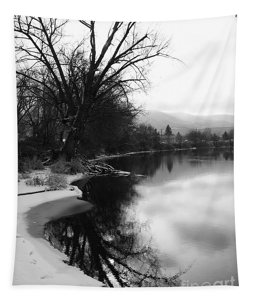 Black And White Tapestry featuring the photograph Winter Tree Reflection - Black and White by Carol Groenen