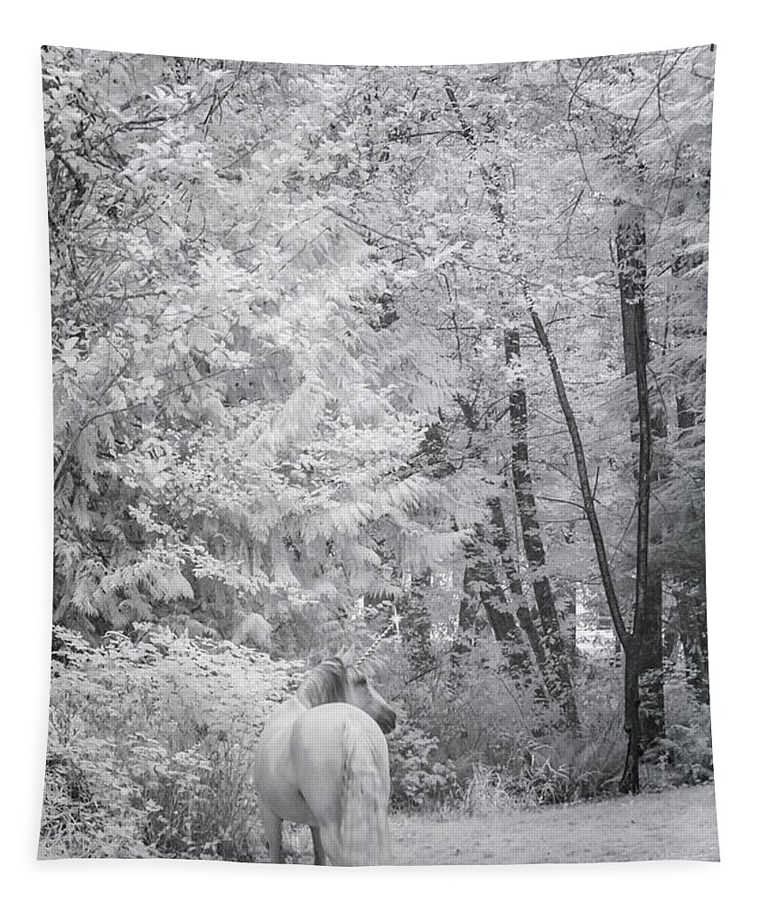 Winter Unicorn Tapestry featuring the photograph Winter Unicorn by Wes and Dotty Weber