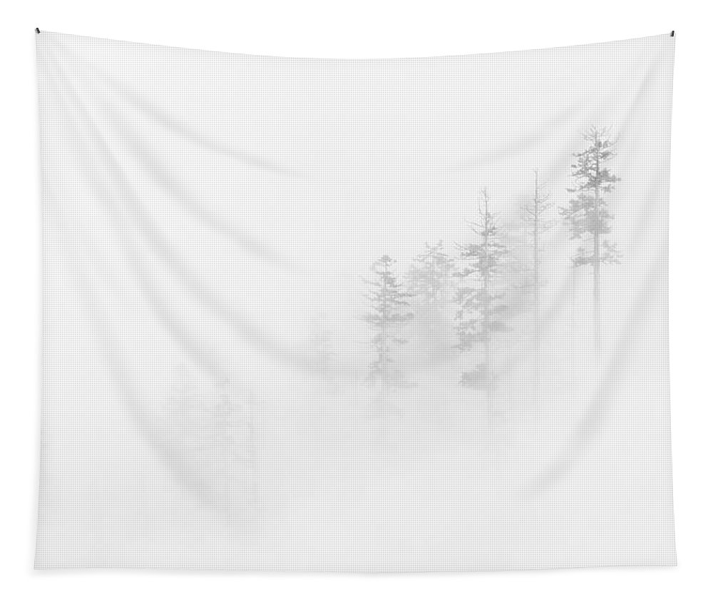 Winter Tapestry featuring the photograph Winter Veil by Mike Dawson