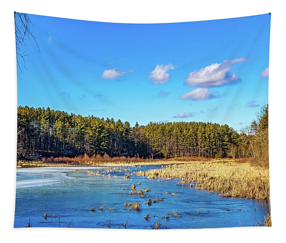Winter Tapestry featuring the photograph Winter's Demise by Steve Harrington