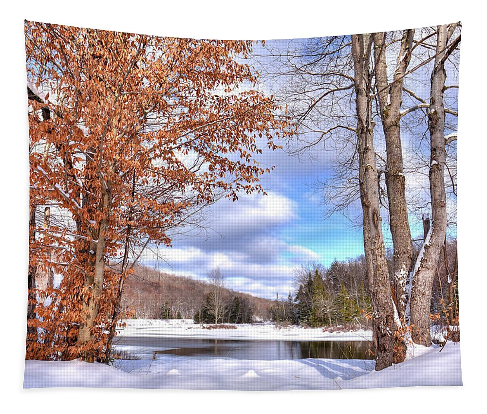 Landscapes Tapestry featuring the photograph Winters Window by David Patterson